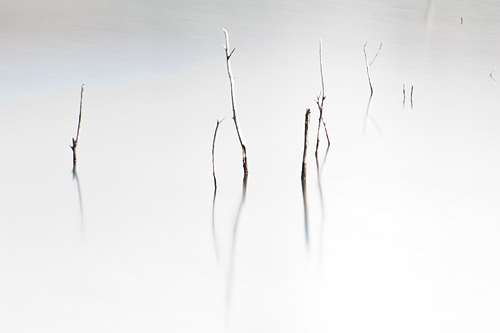 篠田池-1