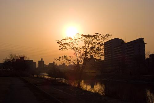 日曜の河川敷-11