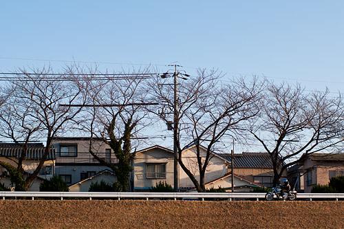 矢田川-2