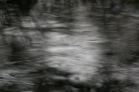 春の小幡緑地-6
