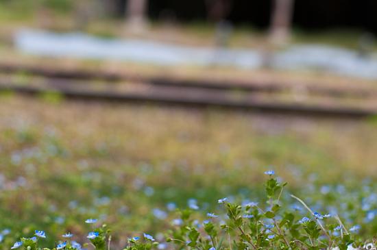 名鉄廃線-4