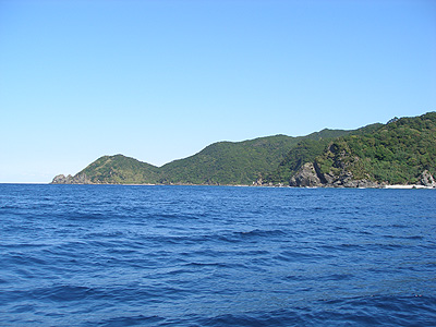 20081121l.jpg