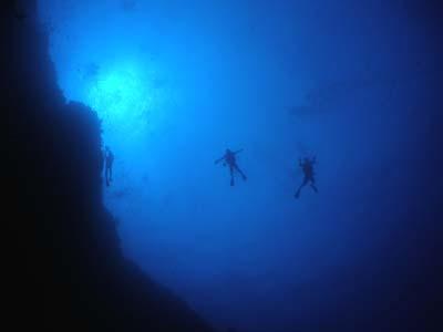 渡名喜遠征ダイビング