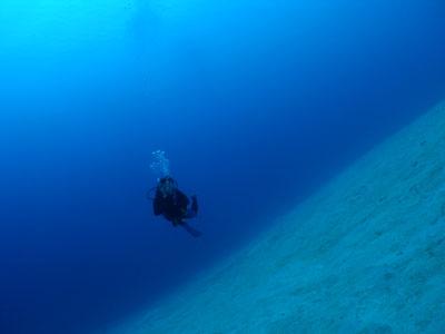 沖縄ダイビングライセンス取得