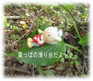IMG_4056のコピー