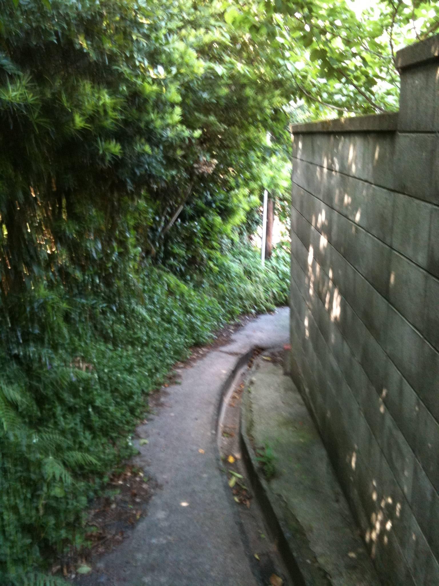 伊豆山風景3