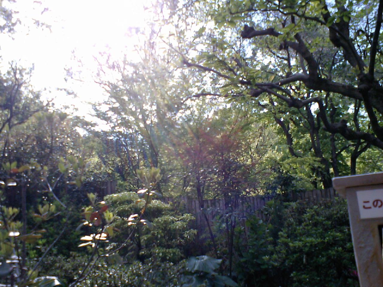 豊島園温泉1