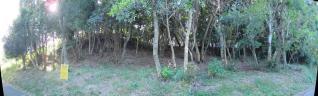 IMG_1296a_20101209212943.jpg