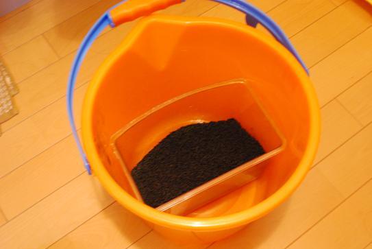 Carbon01.jpg