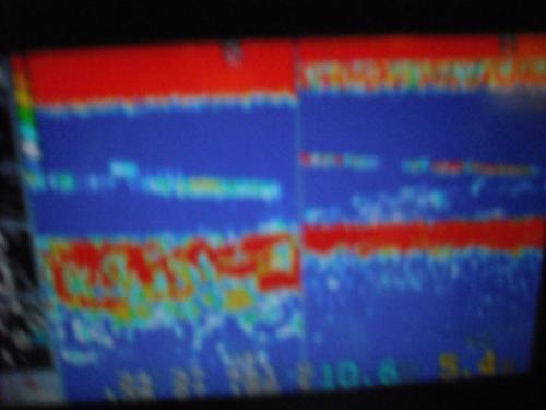 DSCF6124_convert_20091230124538.jpg
