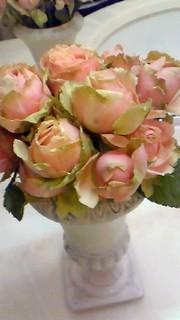 3月28日 薔薇2