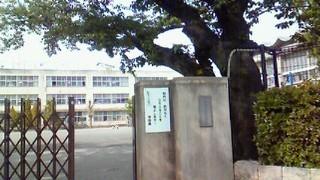 110502 小学校