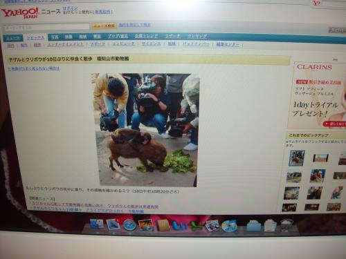 DSCN2954_convert_20101018212720.jpg