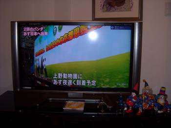 DSCN3249_convert_20110220205425.jpg