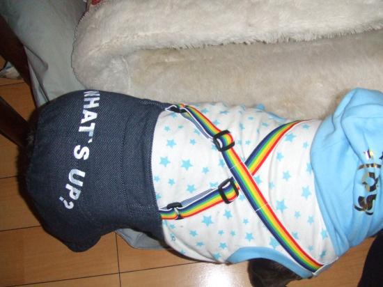 2010_0118SITIFUKU0025_convert_20100119180837.jpg