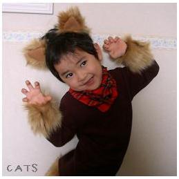 20101022-cats.jpg