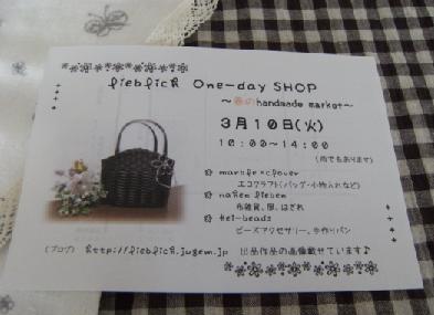 blog-20090310-2