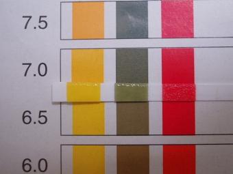 イニシャル溶液のpH