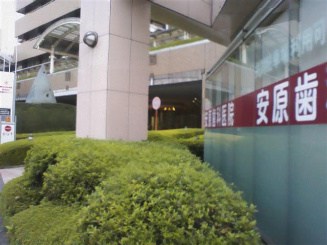 SA3E0105.jpg