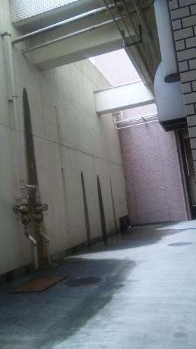 20110225_01.jpg