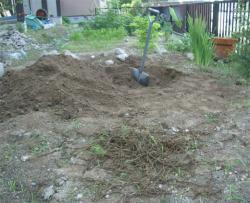 まずは穴を掘って根を除去