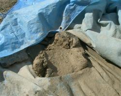 砂を加えて踏み踏み