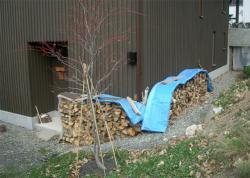 流木系の薪はまだ