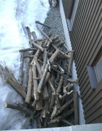 荷室から間伐木を取り出す