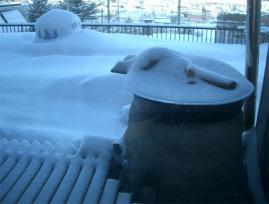 3月22日雪