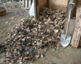 未成熟堆肥を掻き出す