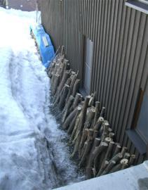 軒下に並べたヤナギ