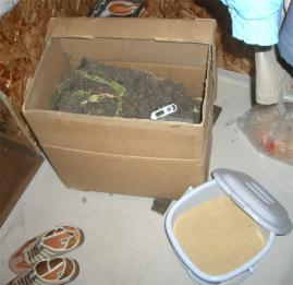 玄関クローゼットに置いたダン箱堆肥