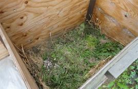 今年の堆肥材料-雑草