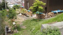 2010-6 南側庭