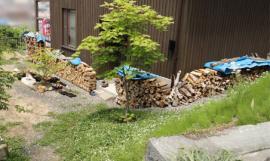 南側軒下は薪で満杯
