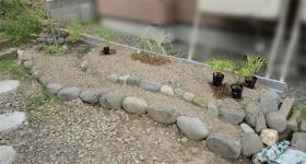 植え付け前の花壇