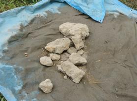 採取したままの粘土