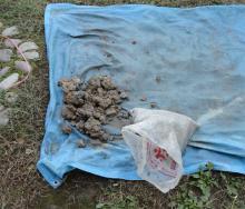 青シートに粘土を広げる
