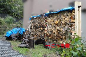 ダム湖流木の薪棚
