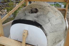 粘土窯天頂付近