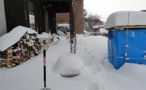 冬は雪に埋もれる