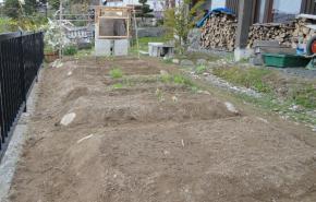 植え付け後畑の全景