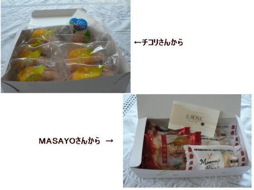 img20080421_1.jpg