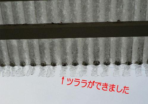 p12208061.jpg