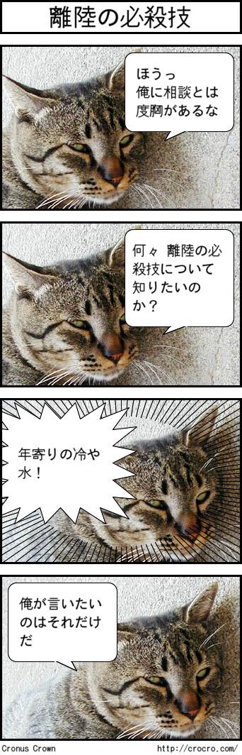 01_20091110204746.jpg