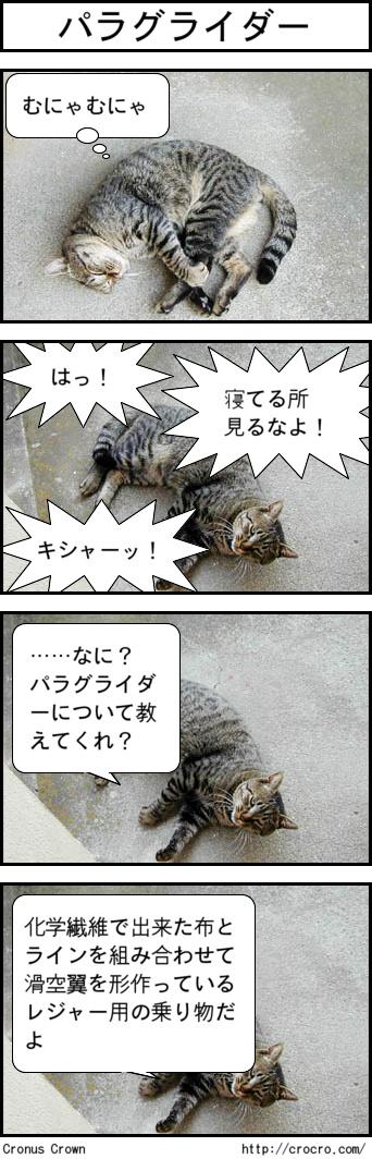 03_20091110212632.jpg
