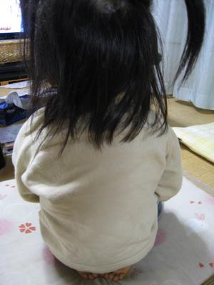 2009010504.jpg