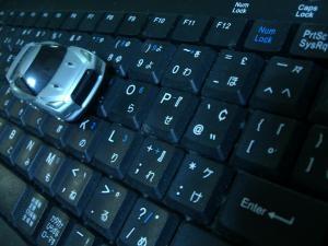 CIMG0011_convert_20090104220947[1]