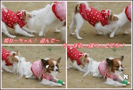 姫&苺RAN