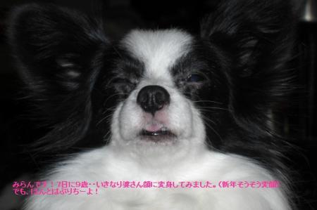 2_20100208210550.jpg
